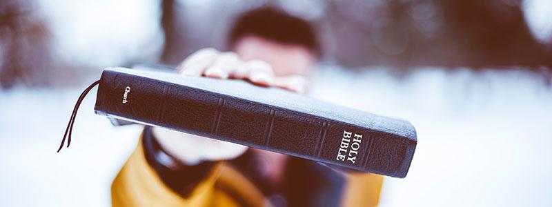 2019 Bible Reading Plans